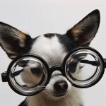 Enlevez vos lunettes pour rester motivé