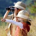 Explorateur